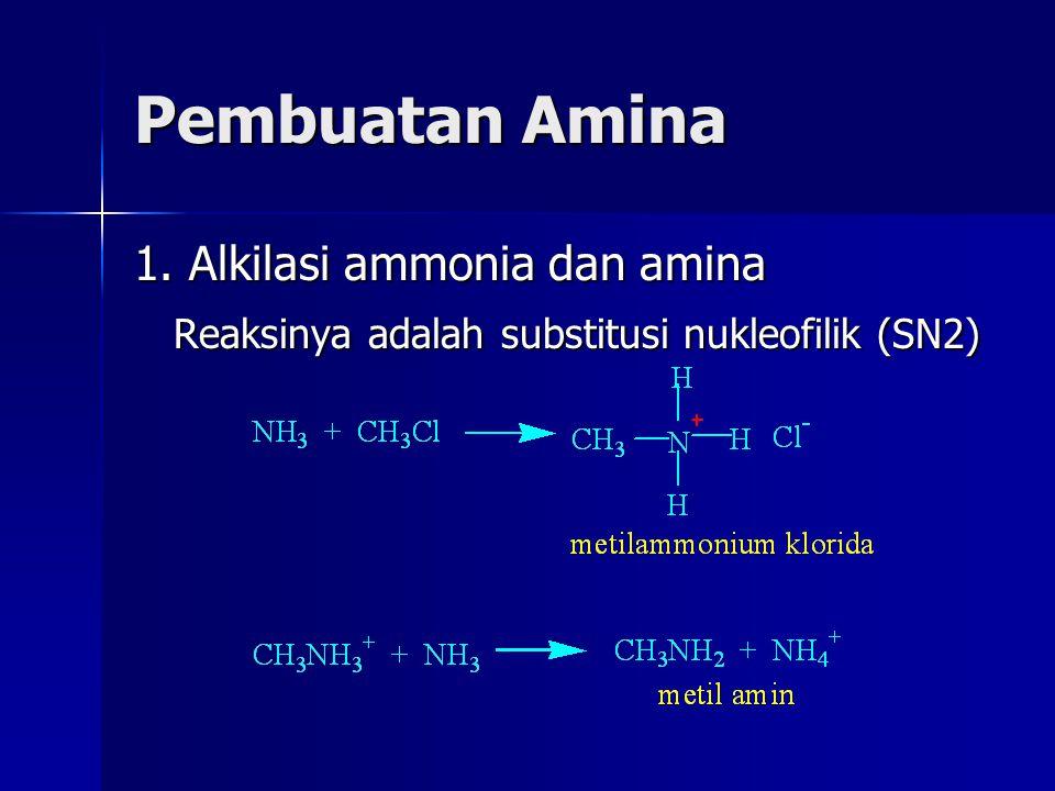 Pembuatan Amina 1. Alkilasi ammonia dan amina Reaksinya adalah substitusi nukleofilik (SN2)