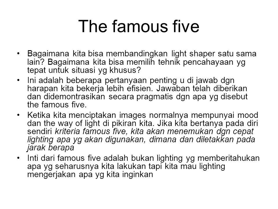 The famous five Bagaimana kita bisa membandingkan light shaper satu sama lain.