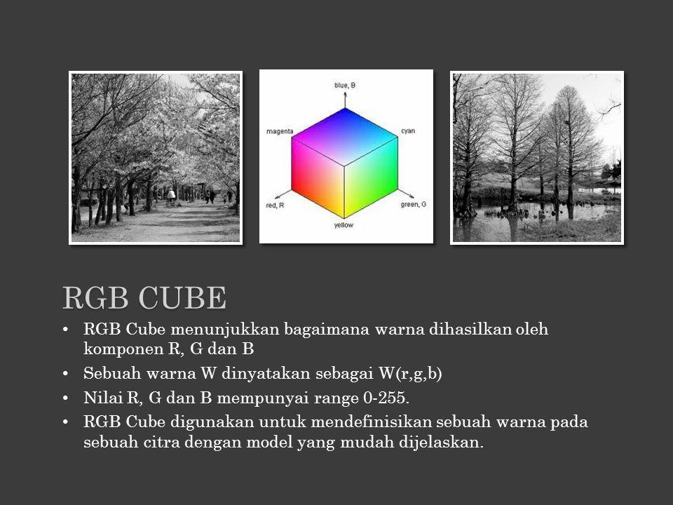 RGB Cube menunjukkan bagaimana warna dihasilkan oleh komponen R, G dan B Sebuah warna W dinyatakan sebagai W(r,g,b) Nilai R, G dan B mempunyai range 0