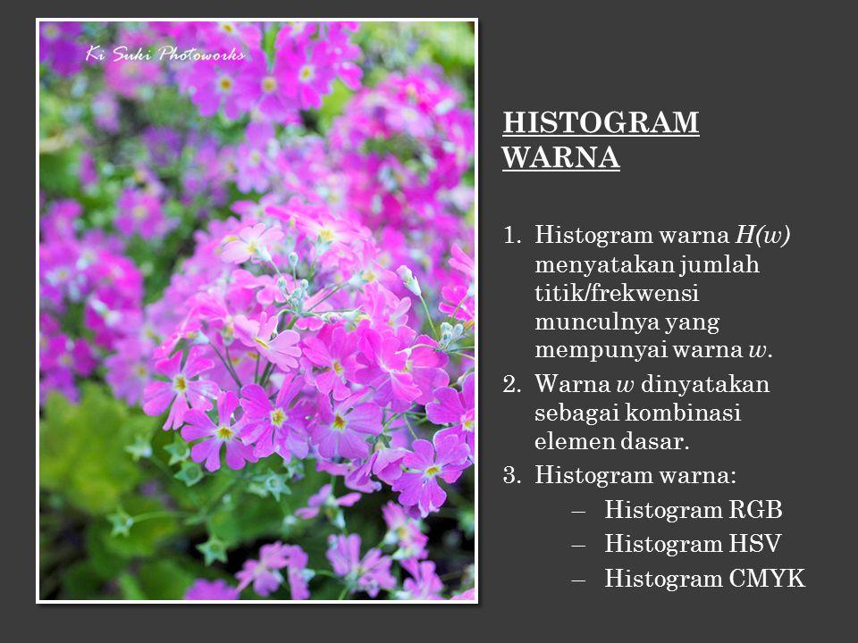 HISTOGRAM WARNA 1.Histogram warna H(w) menyatakan jumlah titik/frekwensi munculnya yang mempunyai warna w. 2.Warna w dinyatakan sebagai kombinasi elem