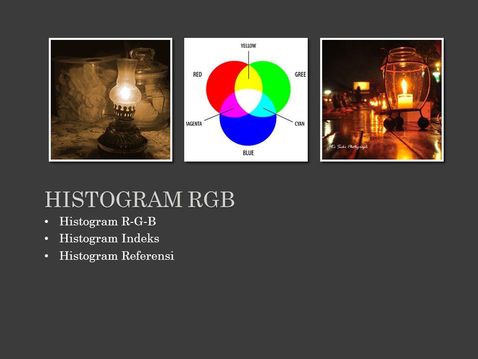 Histogram R-G-B Histogram Indeks Histogram Referensi HISTOGRAM RGB