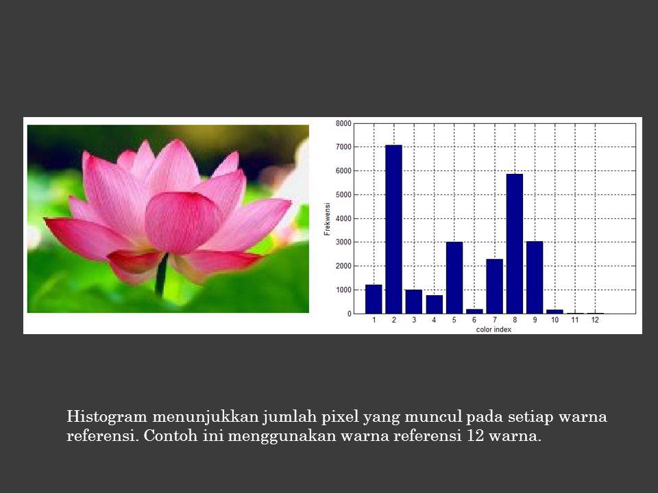 Histogram menunjukkan jumlah pixel yang muncul pada setiap warna referensi. Contoh ini menggunakan warna referensi 12 warna.