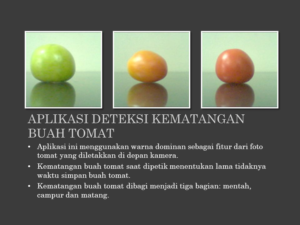 Aplikasi ini menggunakan warna dominan sebagai fitur dari foto tomat yang diletakkan di depan kamera. Kematangan buah tomat saat dipetik menentukan la