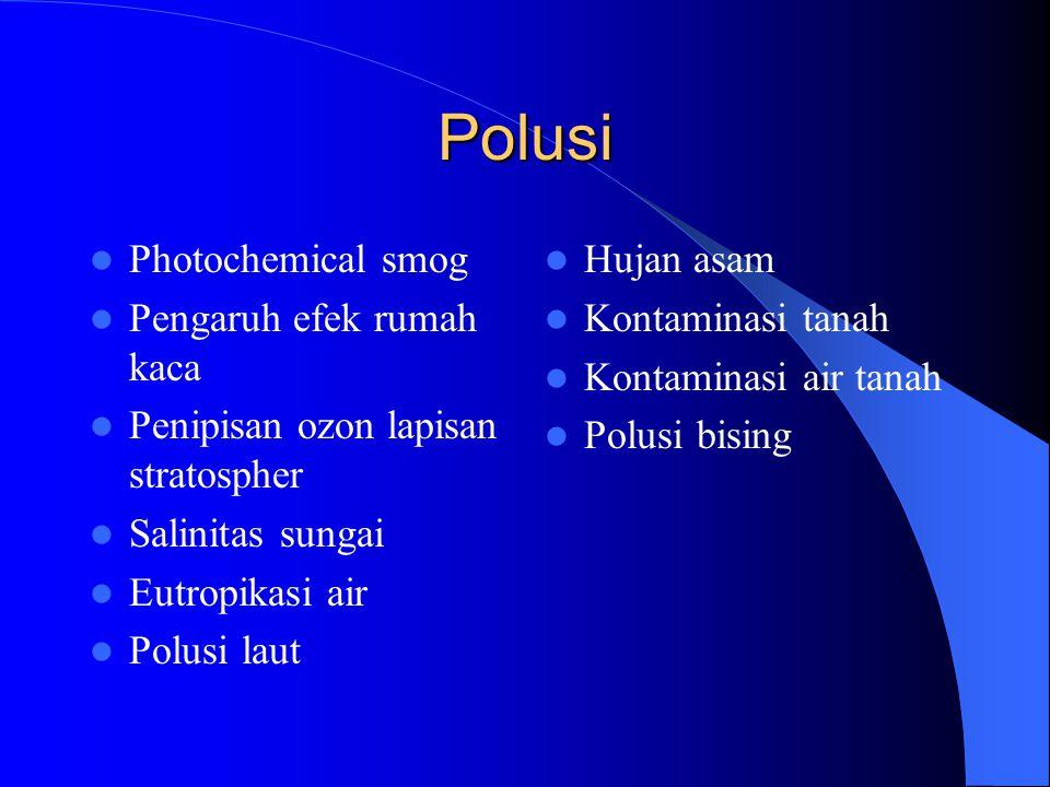Polusi Photochemical smog Pengaruh efek rumah kaca Penipisan ozon lapisan stratospher Salinitas sungai Eutropikasi air Polusi laut Hujan asam Kontaminasi tanah Kontaminasi air tanah Polusi bising
