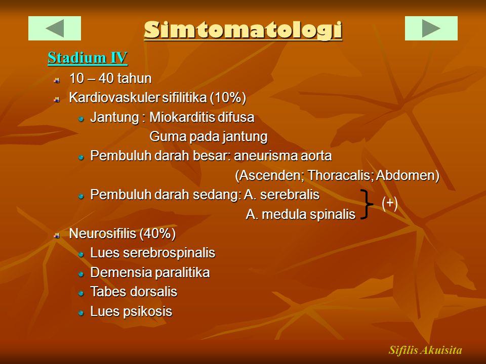 Simtomatologi Stadium IV 10 – 40 tahun Kardiovaskuler sifilitika (10%) Jantung : Miokarditis difusa Guma pada jantung Guma pada jantung Pembuluh darah