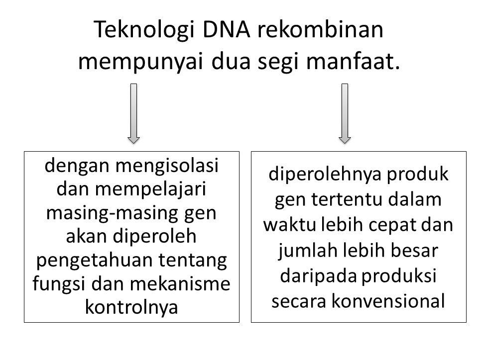 Teknologi DNA rekombinan mempunyai dua segi manfaat.