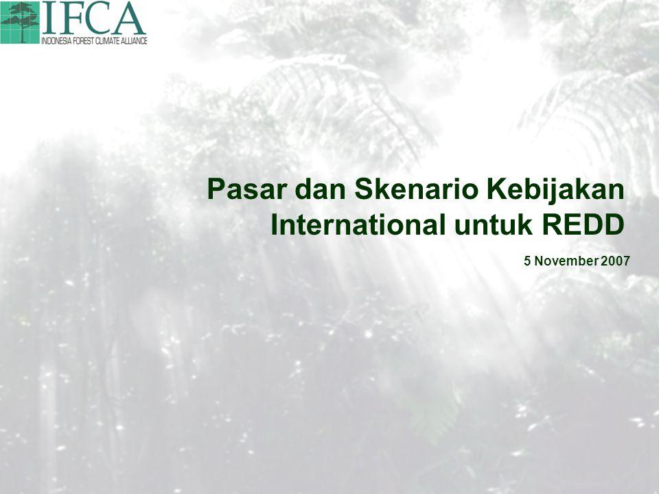 Pasar dan Skenario Kebijakan International untuk REDD 5 November 2007