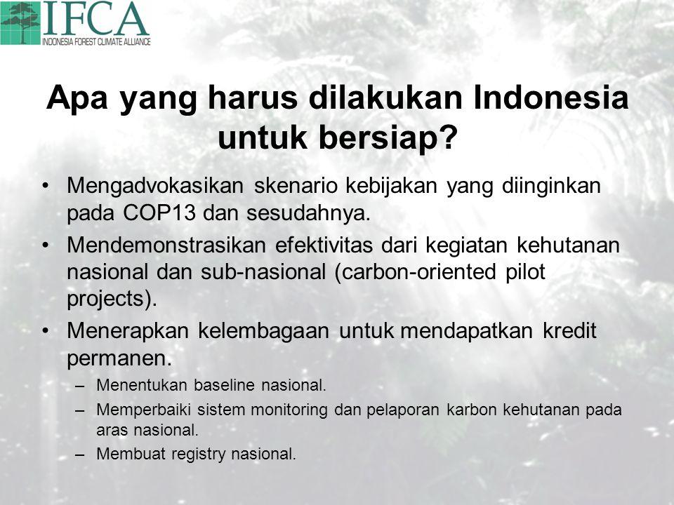 Apa yang harus dilakukan Indonesia untuk bersiap? Mengadvokasikan skenario kebijakan yang diinginkan pada COP13 dan sesudahnya. Mendemonstrasikan efek