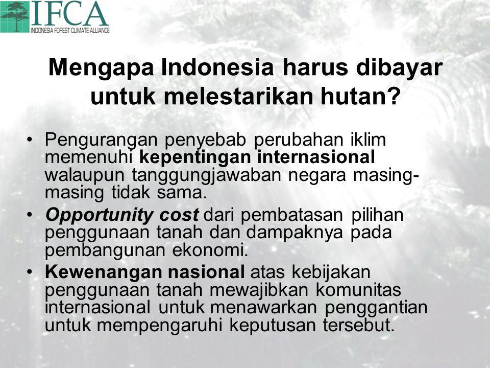 Mengapa Indonesia harus dibayar untuk melestarikan hutan? Pengurangan penyebab perubahan iklim memenuhi kepentingan internasional walaupun tanggungjaw