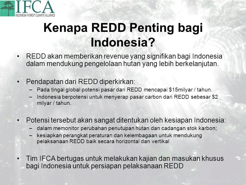 Kenapa REDD Penting bagi Indonesia? REDD akan memberikan revenue yang signifikan bagi Indonesia dalam mendukung pengelolaan hutan yang lebih berkelanj