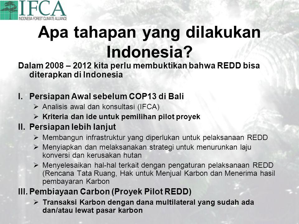 Apa tahapan yang dilakukan Indonesia? Dalam 2008 – 2012 kita perlu membuktikan bahwa REDD bisa diterapkan di Indonesia I.Persiapan Awal sebelum COP13