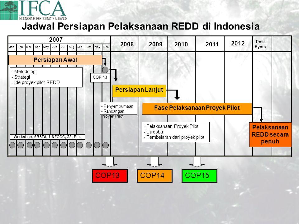 JanFebMarAprMayJunJulAugSepOctNovDec 2007 2008200920102011 2012 Post Kyoto Jadwal Persiapan Pelaksanaan REDD di Indonesia COP 13 Persiapan Awal Persia