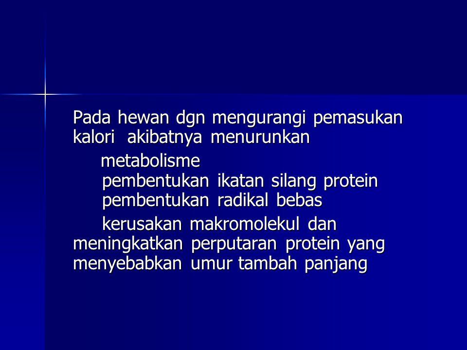 Pada hewan dgn mengurangi pemasukan kalori akibatnya menurunkan metabolisme pembentukan ikatan silang protein pembentukan radikal bebas metabolisme pe