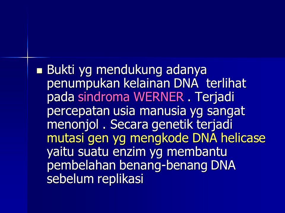Bukti yg mendukung adanya penumpukan kelainan DNA terlihat pada sindroma WERNER. Terjadi percepatan usia manusia yg sangat menonjol. Secara genetik te