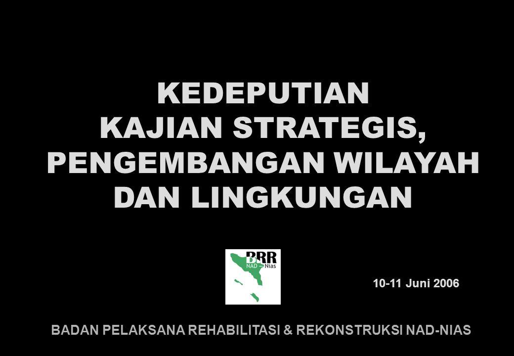 BADAN PELAKSANA REHABILITASI & REKONSTRUKSI NAD-NIAS 10-11 Juni 2006 KEDEPUTIAN KAJIAN STRATEGIS, PENGEMBANGAN WILAYAH DAN LINGKUNGAN