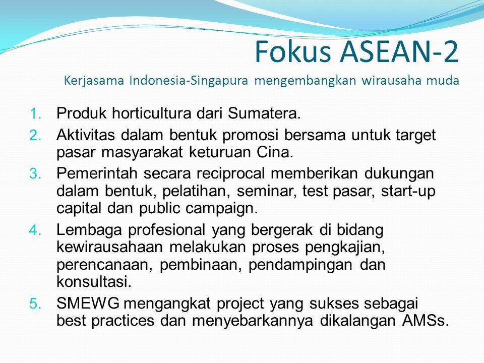 Fokus ASEAN-2 Kerjasama Indonesia-Singapura mengembangkan wirausaha muda 1. Produk horticultura dari Sumatera. 2. Aktivitas dalam bentuk promosi bersa