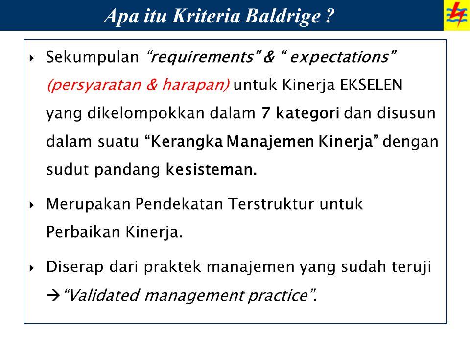 """ Sekumpulan """"requirements"""" & """" expectations"""" (persyaratan & harapan) untuk Kinerja EKSELEN yang dikelompokkan dalam 7 kategori dan disusun dalam suat"""