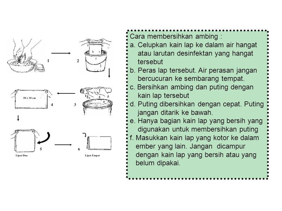 Cara membersihkan ambing : a. Celupkan kain lap ke dalam air hangat atau larutan desinfektan yang hangat tersebut b. Peras lap tersebut. Air perasan j