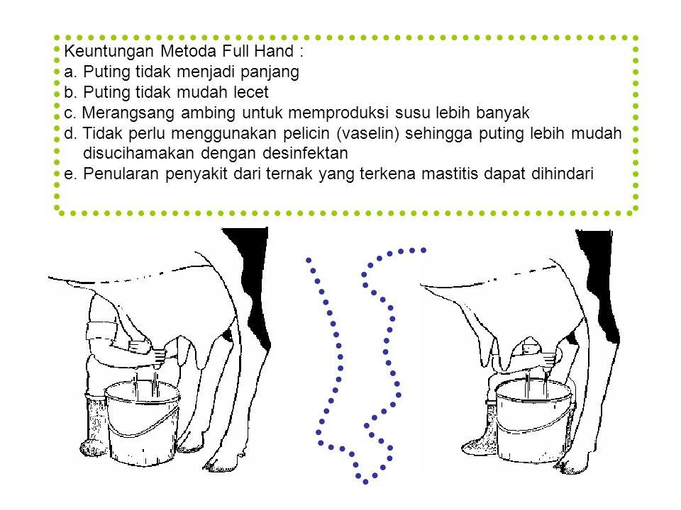 Keuntungan Metoda Full Hand : a. Puting tidak menjadi panjang b. Puting tidak mudah lecet c. Merangsang ambing untuk memproduksi susu lebih banyak d.