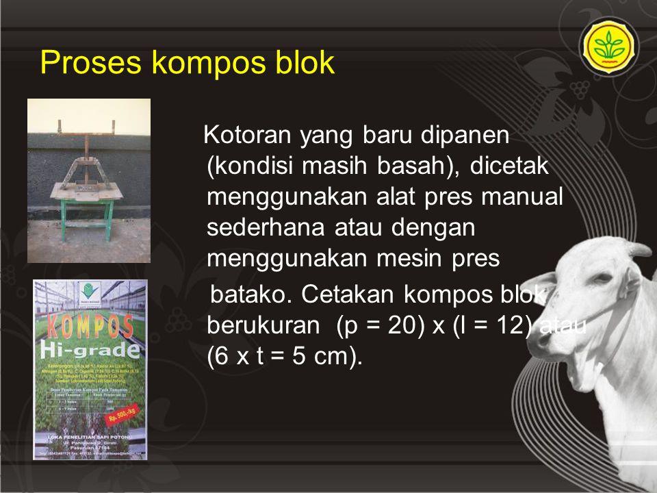 Proses kompos blok Kotoran yang baru dipanen (kondisi masih basah), dicetak menggunakan alat pres manual sederhana atau dengan menggunakan mesin pres batako.