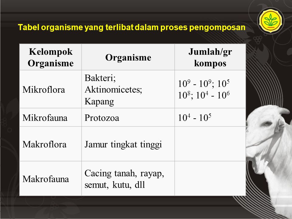 Tabel organisme yang terlibat dalam proses pengomposan Kelompok Organisme Organisme Jumlah/gr kompos Mikroflora Bakteri; Aktinomicetes; Kapang 10 9 - 10 9 ; 10 5 10 8 ; 10 4 - 10 6 MikrofaunaProtozoa10 4 - 10 5 MakrofloraJamur tingkat tinggi Makrofauna Cacing tanah, rayap, semut, kutu, dll