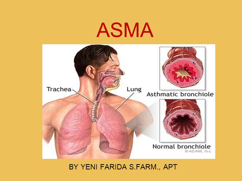 ASMA BY YENI FARIDA S.FARM., APT