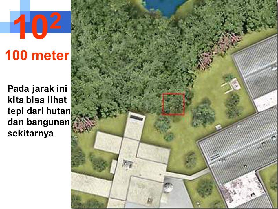Pada jarak ini kita bisa lihat tepi dari hutan dan bangunan sekitarnya 10 2 100 meter