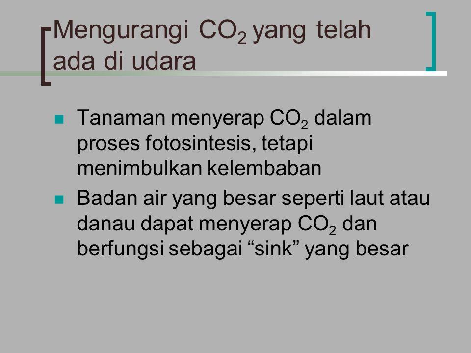 Mengurangi CO 2 yang telah ada di udara Tanaman menyerap CO 2 dalam proses fotosintesis, tetapi menimbulkan kelembaban Badan air yang besar seperti laut atau danau dapat menyerap CO 2 dan berfungsi sebagai sink yang besar