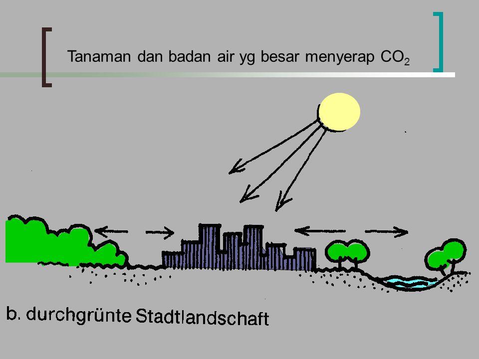 Tanaman dan badan air yg besar menyerap CO 2