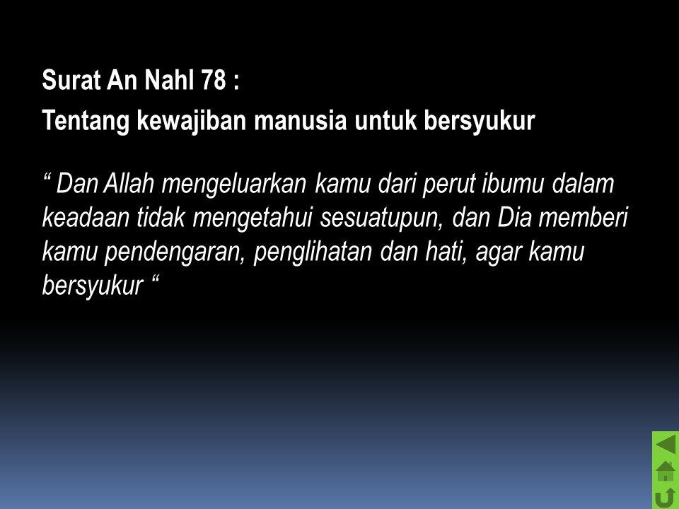 "Surat Al-Dzariyah ayat 56 : Tentang tugas manusia "" Dan Aku tidak menciptaka jin dan manusia melainkan supaya mereka menyembahKu ""  Dengan tegas Alla"