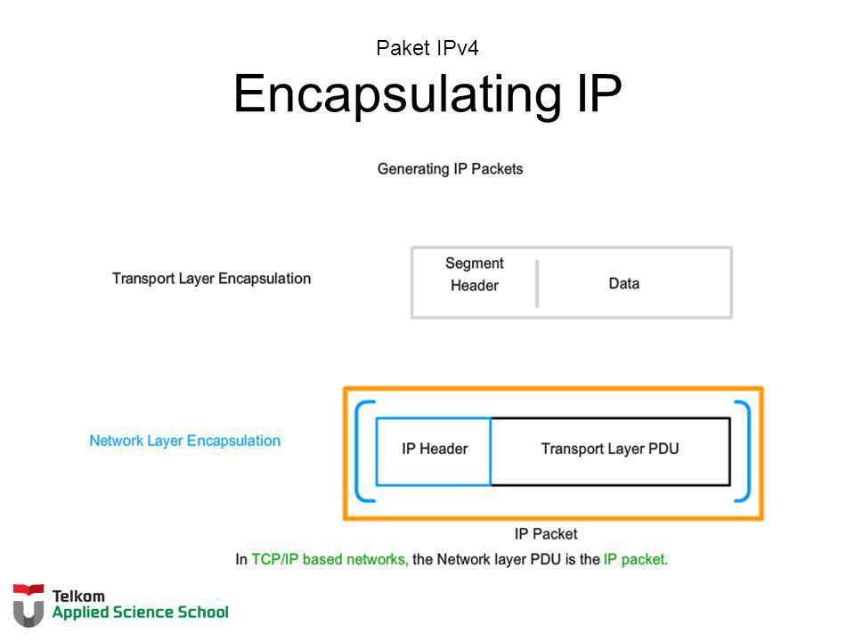 Paket IPv4 Encapsulating IP
