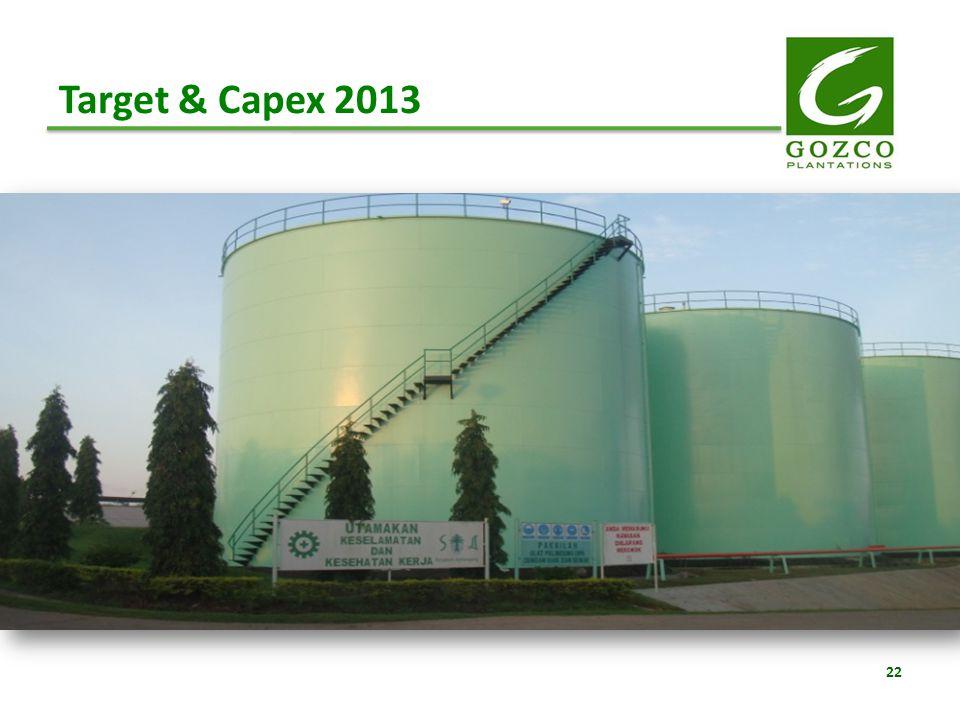 22 Target & Capex 2013