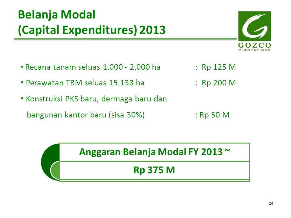 24 Belanja Modal (Capital Expenditures) 2013 Recana tanam seluas 1.000 - 2.000 ha: Rp 125 M Perawatan TBM seluas 15.138 ha: Rp 200 M Konstruksi PKS ba