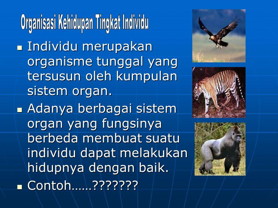 Individu merupakan organisme tunggal yang tersusun oleh kumpulan sistem organ. Individu merupakan organisme tunggal yang tersusun oleh kumpulan sistem