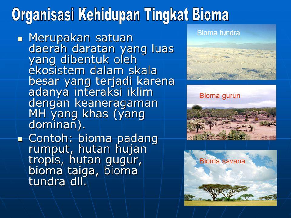 Merupakan satuan daerah daratan yang luas yang dibentuk oleh ekosistem dalam skala besar yang terjadi karena adanya interaksi iklim dengan keaneragama