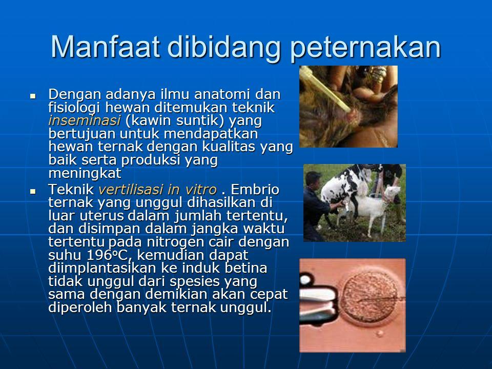 Manfaat dibidang peternakan Dengan adanya ilmu anatomi dan fisiologi hewan ditemukan teknik inseminasi (kawin suntik) yang bertujuan untuk mendapatkan