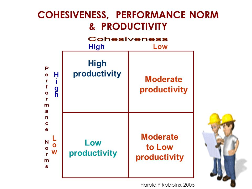 COHESIVENESS, PERFORMANCE NORM & PRODUCTIVITY HighHigh LowLow HighLow productivity High productivity Moderate productivity Moderate to Low productivity Harold P Robbins, 2005