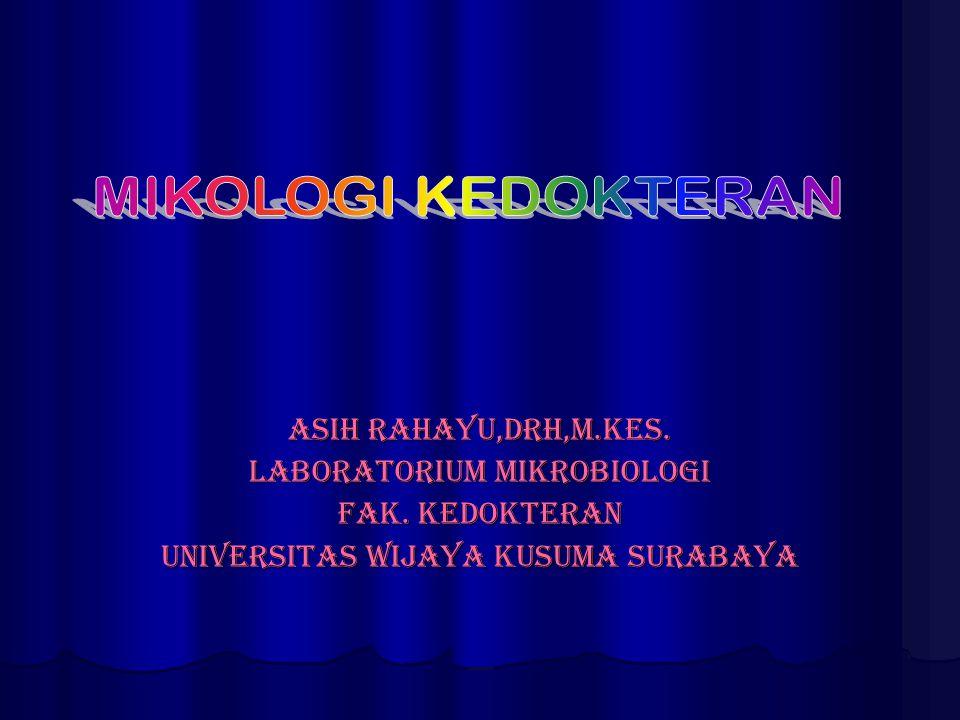 Asih Rahayu,drh,M.kes. Laboratorium mikrobiologi Fak. Kedokteran Universitas wijaya kusuma surabaya