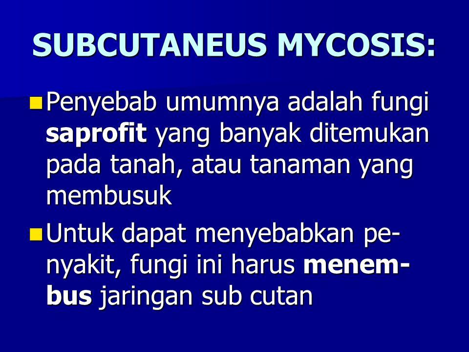 SUBCUTANEUS MYCOSIS: Penyebab umumnya adalah fungi saprofit yang banyak ditemukan pada tanah, atau tanaman yang membusuk Penyebab umumnya adalah fungi