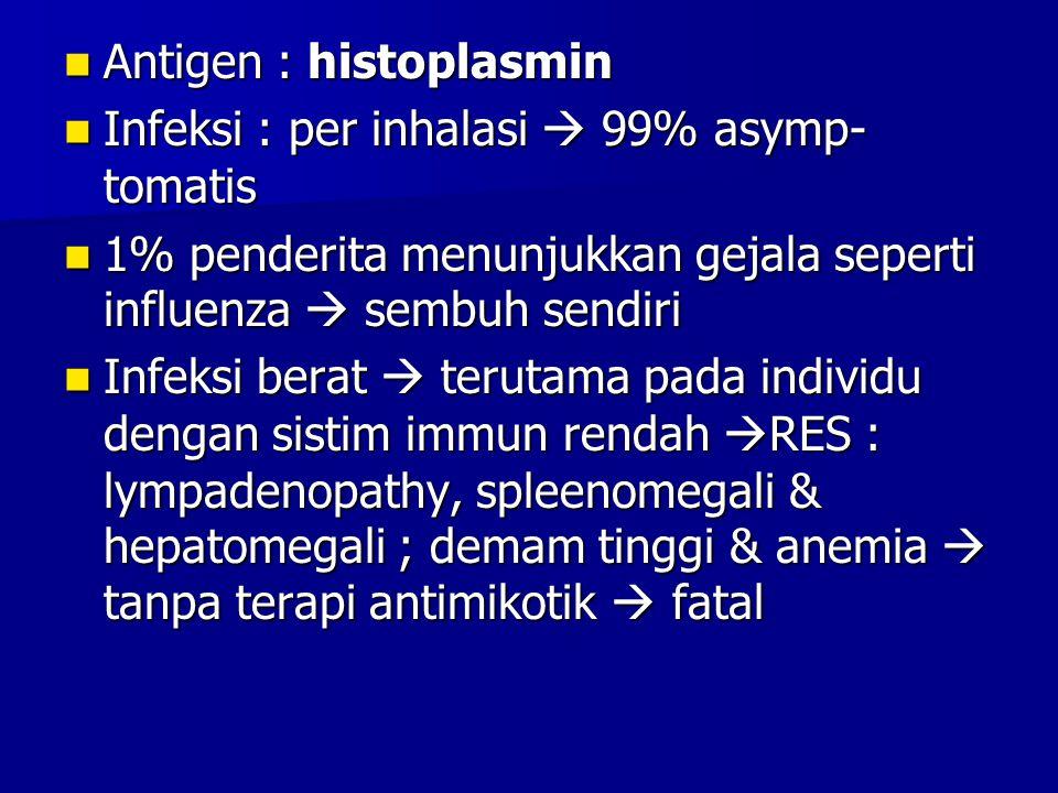 Antigen : histoplasmin Antigen : histoplasmin Infeksi : per inhalasi  99% asymp- tomatis Infeksi : per inhalasi  99% asymp- tomatis 1% penderita men