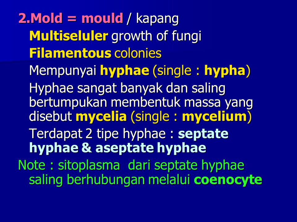 2.Mold = mould / kapang Multiseluler growth of fungi Filamentous colonies Mempunyai hyphae (single : hypha) Hyphae sangat banyak dan saling bertumpuka