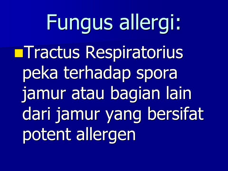 Fungus allergi: Tractus Respiratorius peka terhadap spora jamur atau bagian lain dari jamur yang bersifat potent allergen Tractus Respiratorius peka t