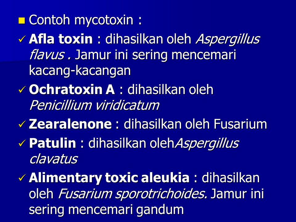 Contoh mycotoxin : Contoh mycotoxin : Afla toxin : dihasilkan oleh Aspergillus flavus. Jamur ini sering mencemari kacang-kacangan Afla toxin : dihasil