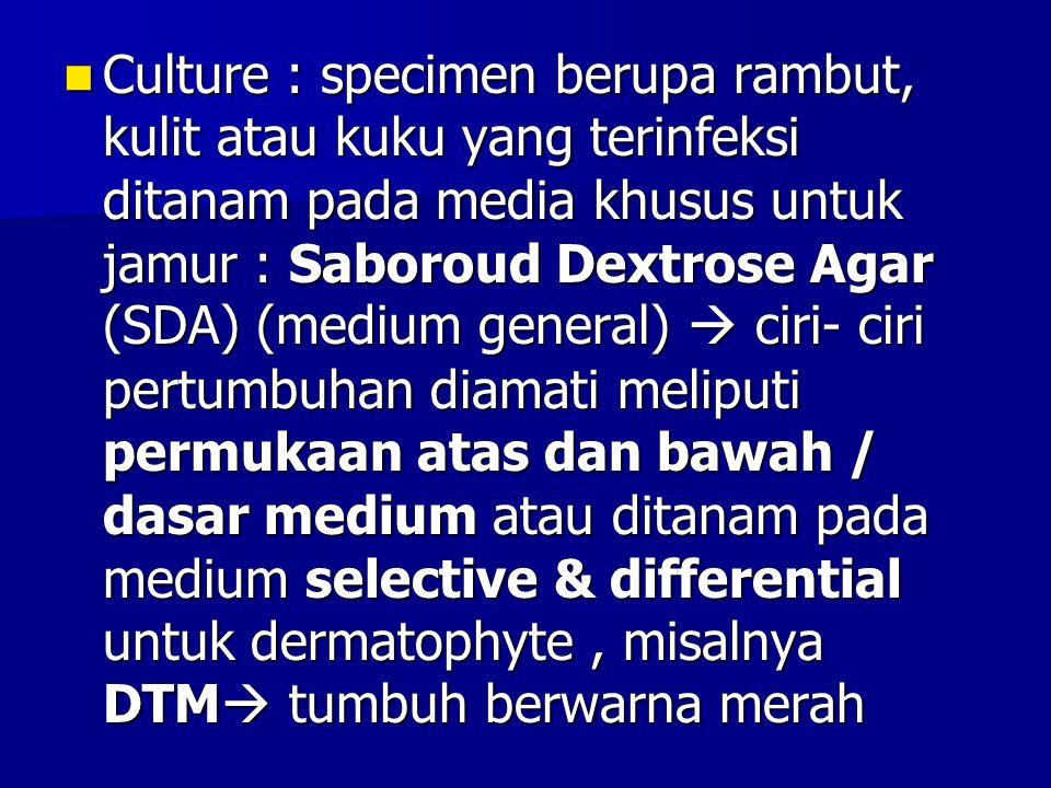 Culture : specimen berupa rambut, kulit atau kuku yang terinfeksi ditanam pada media khusus untuk jamur : Saboroud Dextrose Agar (SDA) (medium general