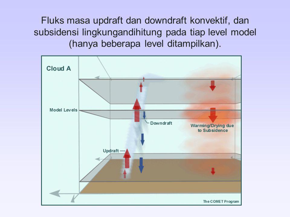 Fluks masa updraft dan downdraft konvektif, dan subsidensi lingkungandihitung pada tiap level model (hanya beberapa level ditampilkan).
