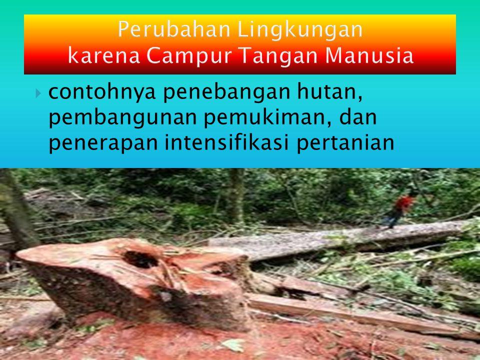 Perubahan Lingkungan karena Campur Tangan Manusia  contohnya penebangan hutan, pembangunan pemukiman, dan penerapan intensifikasi pertanian