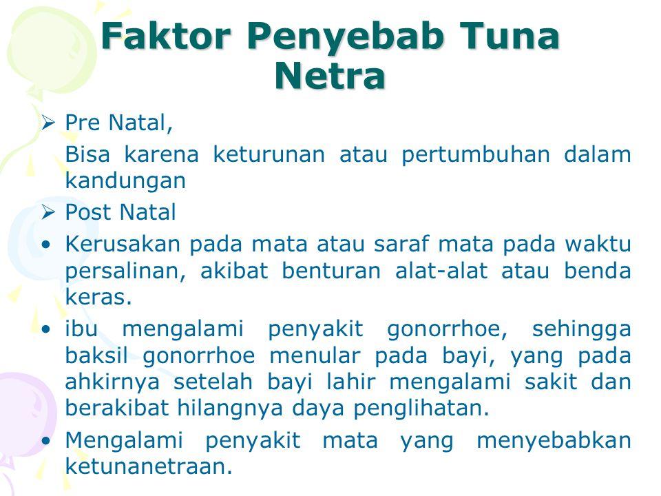 Faktor Penyebab Tuna Netra  Pre Natal, Bisa karena keturunan atau pertumbuhan dalam kandungan  Post Natal Kerusakan pada mata atau saraf mata pada waktu persalinan, akibat benturan alat-alat atau benda keras.