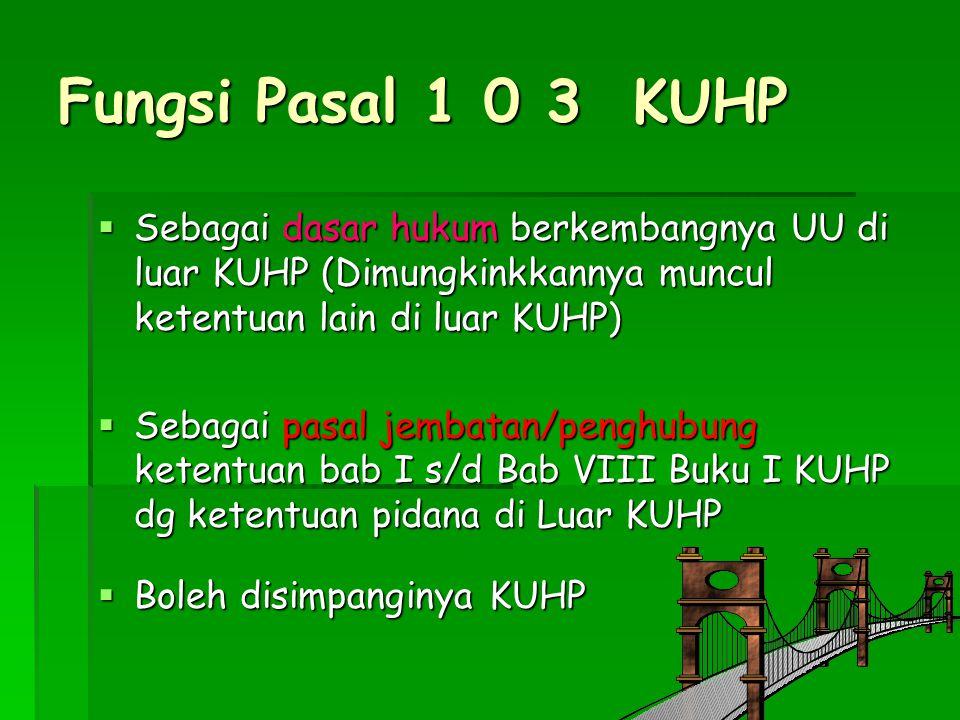 Fungsi Pasal 1 0 3 KUHP  Sebagai dasar hukum berkembangnya UU di luar KUHP (Dimungkinkkannya muncul ketentuan lain di luar KUHP)  Sebagai pasal jemb