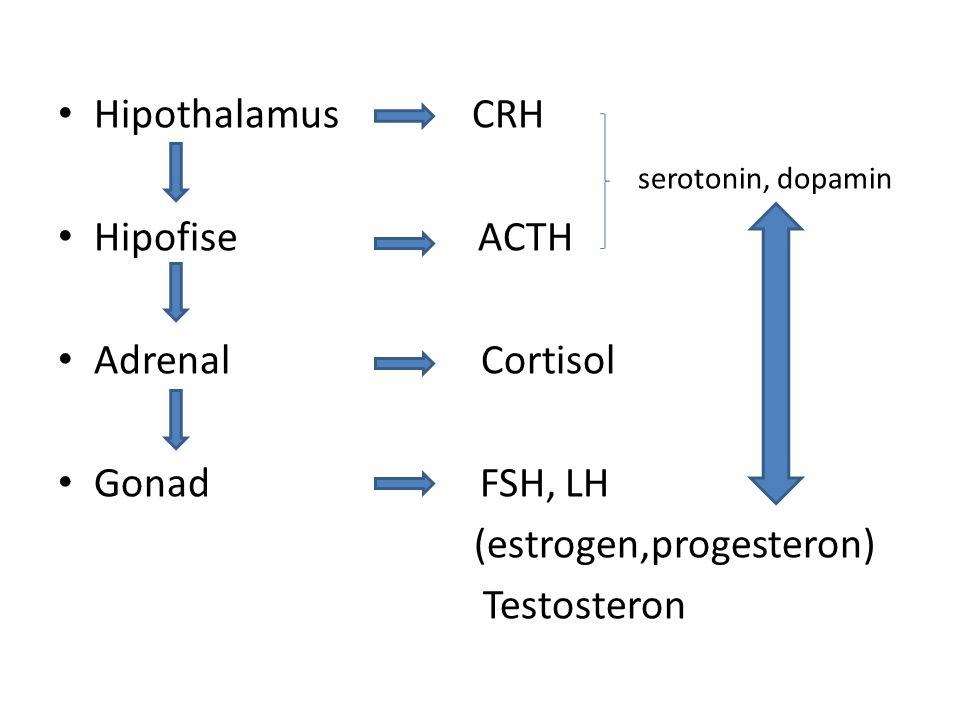 Hipothalamus CRH serotonin, dopamin Hipofise ACTH Adrenal Cortisol Gonad FSH, LH (estrogen,progesteron) Testosteron