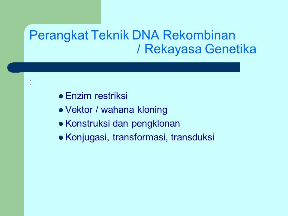 Perangkat Teknik DNA Rekombinan /Rekayasa Genetika : Enzim restriksi Vektor / wahana kloning Konstruksi dan pengklonan Konjugasi, transformasi, transd